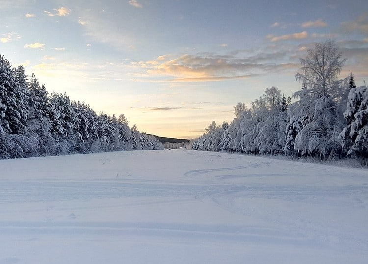 Norrländskt landskap Samuelssons Rapport