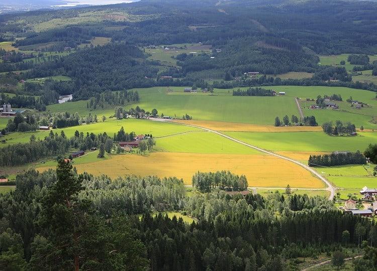 Värmländskt landskap Samuelssons Rapport