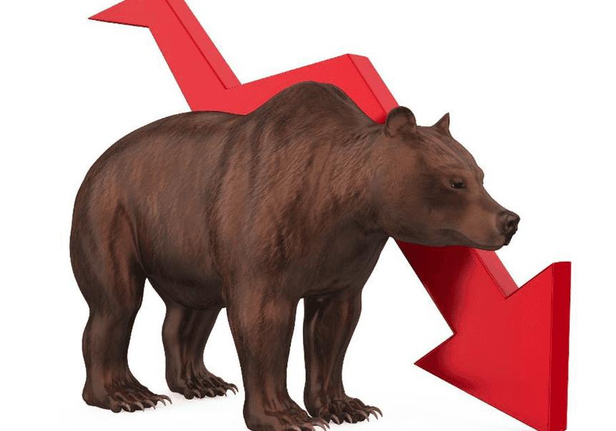 Björnmarknad