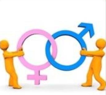 Är kvinnor bättre?